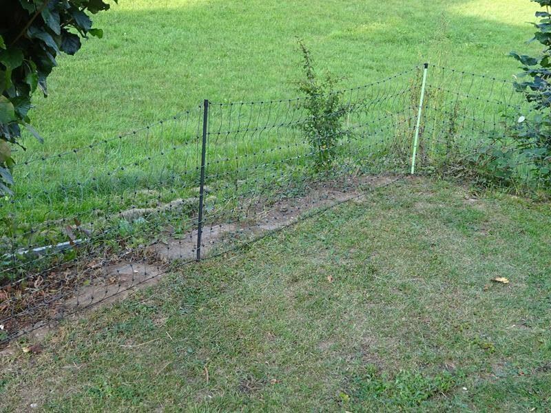 Der Zaun wird weiterhin straff aufgestellt. Dazu die Pfähle in den Boden stecken.